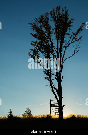 Silhouette of deer stand and tree on sunset. Nostalgic skyline of a hunting tower, trees and grass with setting sun and dark blue sky. South Czech. - Stock Image