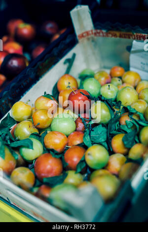 Plums in box - Stock Image
