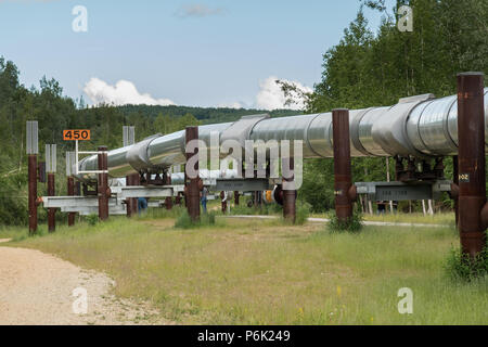 The elevated Trans-Alaskan oil pipeline at the Alyeska Pipeline Visitors Center  in Fairbanks, Alaska. The 4-foot wide pipeline snakes through 800 miles of Alaskan wilderness carrying crude oil from Prudhoe Bay to Valdez, Alaska. - Stock Image