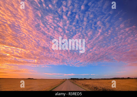 Canada, Saskatchewan, Lepine. Clouds over prairie road at sunrise. - Stock Image