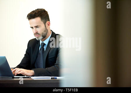 Businessman using laptop in office - Stock Image
