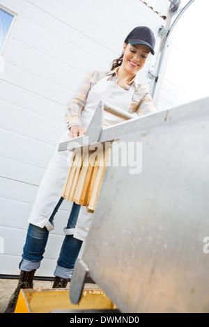 Beekeeper Collecting Honeycombs At Beekeeping Factory - Stock Image