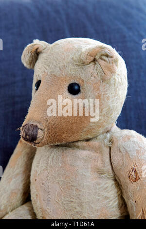 German Ted very elderly much loved and worn German teddy bear, c. 1914 showing a fine pointed face profile - Stock Image