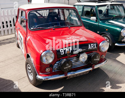 The oldest surviving BMC works Mini Cooper on display at the 2019 Silverstone Classic Media Day.  Part of the 50th anniversary celebrations of the Mini. - Stock Image