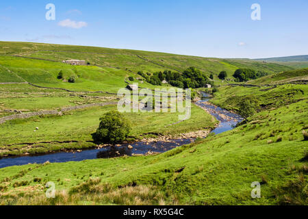 Country landscape with farm and barns and sheep grazing by River Swale in Upper Swaledale, Yorkshire Dales National Park, North Yorkshire, England, UK - Stock Image