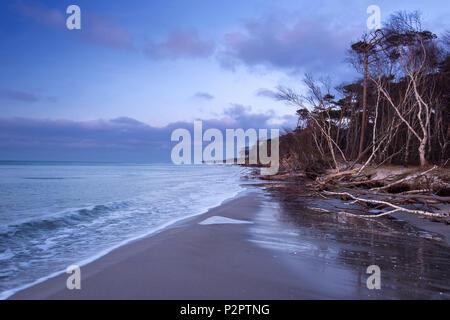 West Beach, Blue Hour, Coast, Baltic Sea, Mecklenburg, Germany, Europe - Stock Image