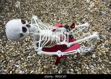 Human Skeleton Model sitting in Red Chair Halloween Decoration - Stock Image