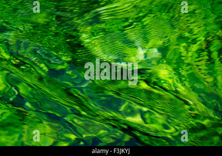 Water looking green as a result of water plants under the surface. River Sorgue, Fontaine-de-Vaucluse, France. - Stock Image