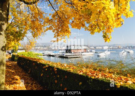 Sunny Autumn Day at Lake Zurich, Zurich, Switzerland - Stock Image