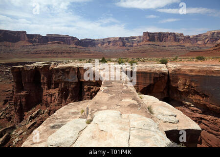 Musselman Arch, White Rim Trail,Canyonlands, Utah, USA. - Stock Image