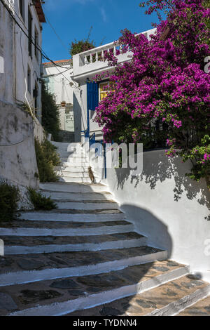 A stepped street in Skopelos, Northern Sporades Greece. - Stock Image