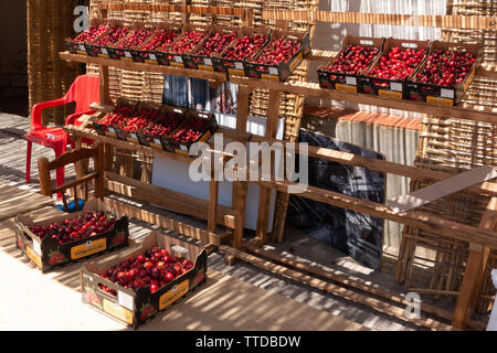 A display of cherries in boxes - Stock Image