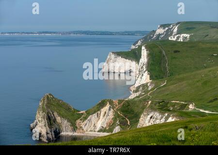 The Dorset Coastal Path near Durdle Door - Stock Image