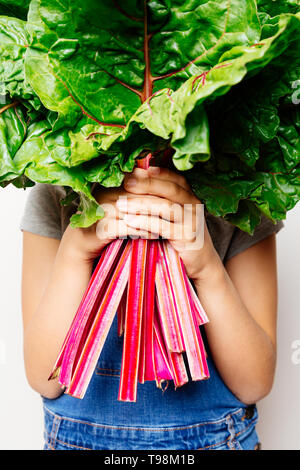 Little girl holding a bunch of fresh rainbow chard and hiding face behind the leaves - Stock Image