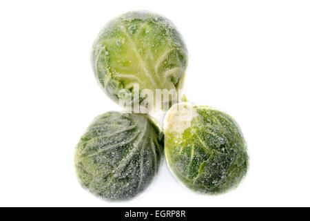 Picture of three single frozen green sprouts - Stock Image