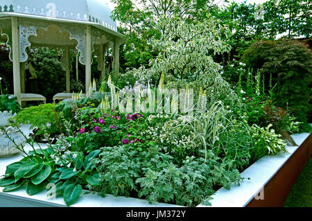 A contemporary arden design with white planted raised bed - Stock Image