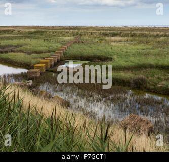 Large concrete block sea defences on Suffolk beach - Stock Image