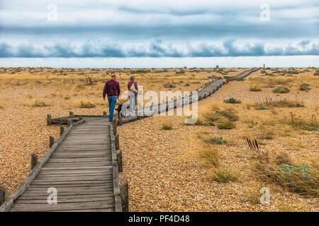 Couple,Walking,Dog,Dungeness,Shingle,Beach,Kent,England,UK - Stock Image