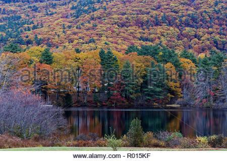 Fall foliage and Megunticook River, Camden, Maine, USA - Stock Image