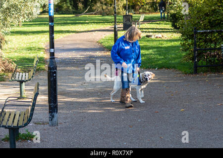 A lady with a young yellow labrador in a blue guide dogs for the blind puppy walking coat, with the young dog looking at something off camera - Stock Image