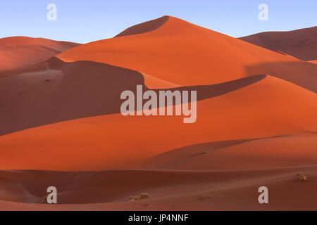 Lines, curves and shadows of large sand dunes of Sossusvlei, Namib Desert, Namibia - Stock Image