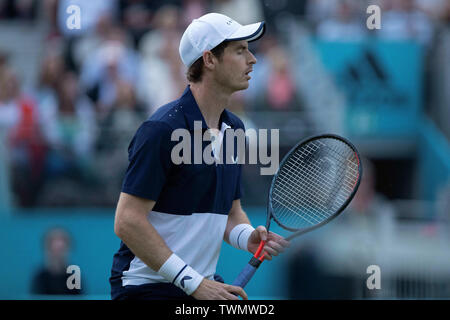 Queen Club, London, UK. 21st June, 2019. The ATP Fever-Tree Tennis Tournament; A dejected Andy Murray (GBR) as Daniel Evans (GBR) and Ken Skupski (GBR) break serve Credit: Action Plus Sports/Alamy Live News - Stock Image