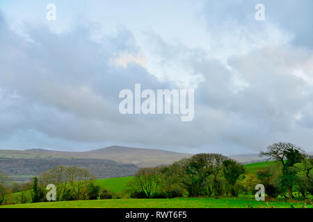 Looking across fields with trees on a wet day to hills of Dartmoor National Park in distance, Devon, England - Stock Image