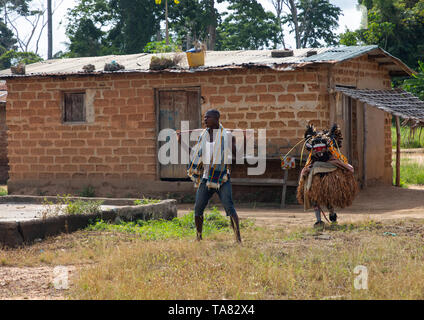 We Guere sacred mask coming out of the sacred forest for a ceremony, Guémon, Bangolo, Ivory Coast - Stock Image