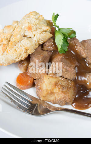 A classic plate of Beef stew served with a suet dumpling - Stock Image