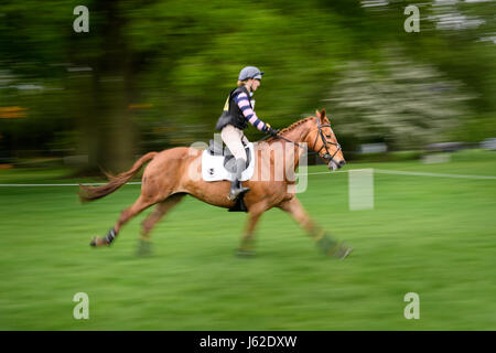 Rockingham Castle grounds, Corby, England. 19th May 2017.  Greta Mason and her horse Ballyard Caitriona gallop past - Stock Image