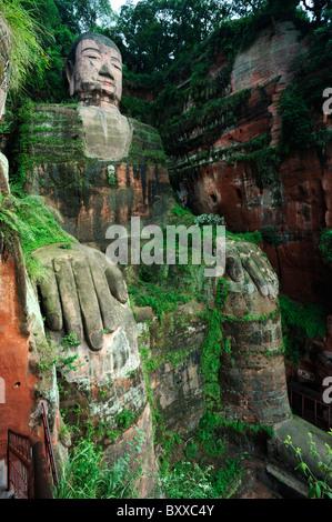 Dafo, The Grand Buddha, Leshan, China - Stock Image