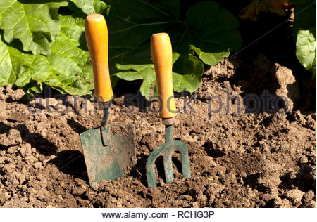 Trowel and garden fork in newly dug over soil - Stock Image