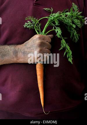 A farmer or gardener holding a single carrot - Stock Image