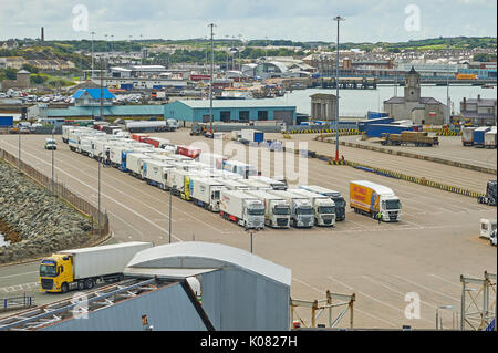 Lines of HGV's waiting on the quayside at Holyhead waiting to be loaded onto an Irish Sea ferry. - Stock Image