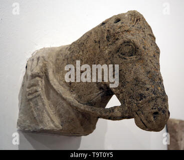 Head of an Iberian horse. 4th century. Marchena, Spain. Pre-roman peoples. Archaeological Museum of Seville. Spain. - Stock Image