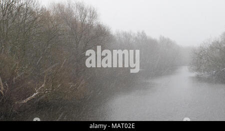 Winter scene given an Impressionist-like effect by a heavy snow shower over a lake at Attenborough Nature Reserve, Nottinghamshire - Stock Image