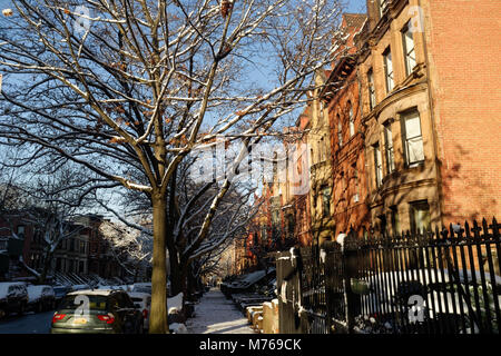 Brownstones in the historic district of Park Slope, Brooklyn, New York City, New York. - Stock Image