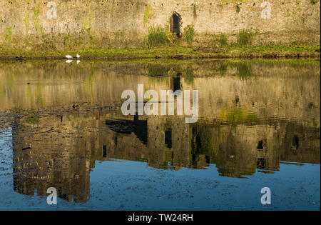 Caerphilly Castle reflected in the castle moat, Caerphilly in South Wales. Caerphilly is the second largest castle in the UK, after Windsor. - Stock Image