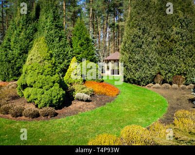 beautiful landscaped garden with conifers and bower - Stock Image