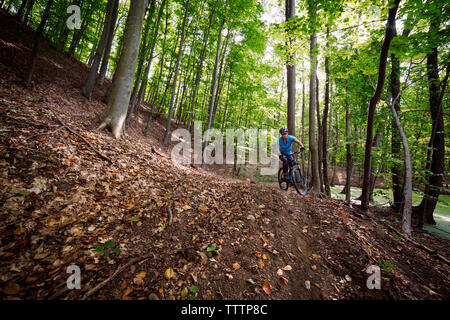 Man cycling in forest - Stock Image