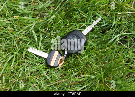 lost car key and house key on key ring in grass - Stock Image