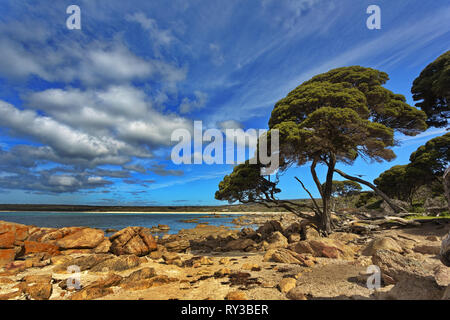Beauty in nature with rocks, sea, trees, and sky at Bunker Bay on Cape Naturaliste in Western Australia - Stock Image