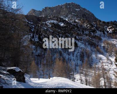 Snowshoeing in Haut Guil valley, Parc regional de Queyras, France - Stock Image