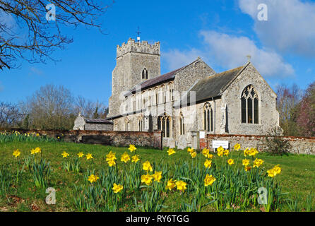 A view of the parish Church of St Peter at Ringland, Norfolk, England, United Kingdom, Europe. - Stock Image