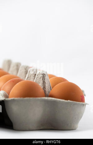 Box of Eggs on a white background - Stock Image