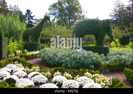 Green Animals Topiary Garden Portsmouth Rhode Island - Stock Image