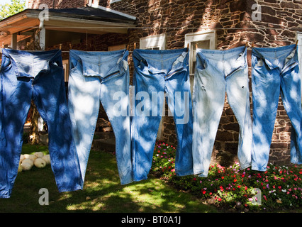 Blue jeans hanging on clothes line in front of rustic farm house - Stock Image