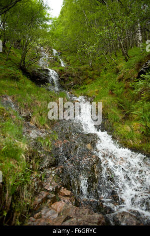 One of the many burns that flow down from the nevis range and into the Glen Nevis gorge - Stock Image
