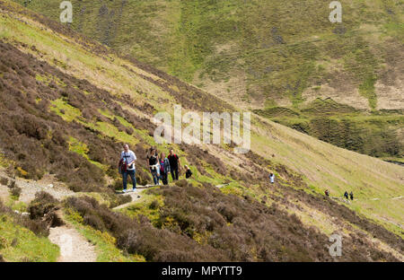 A group of walkers climb the path alongside The Grey Mare's Tail  waterfall, near Moffat, Dumfries & Galloway, Scotland, UK - Stock Image