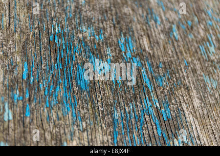 abstract texture paint peeling from weathered wood - Stock Image